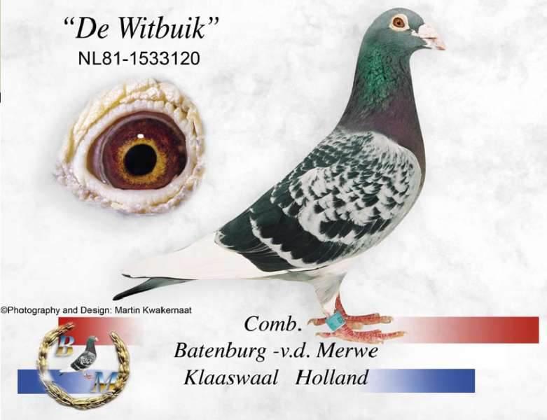 Batenburg-Witbuik_1