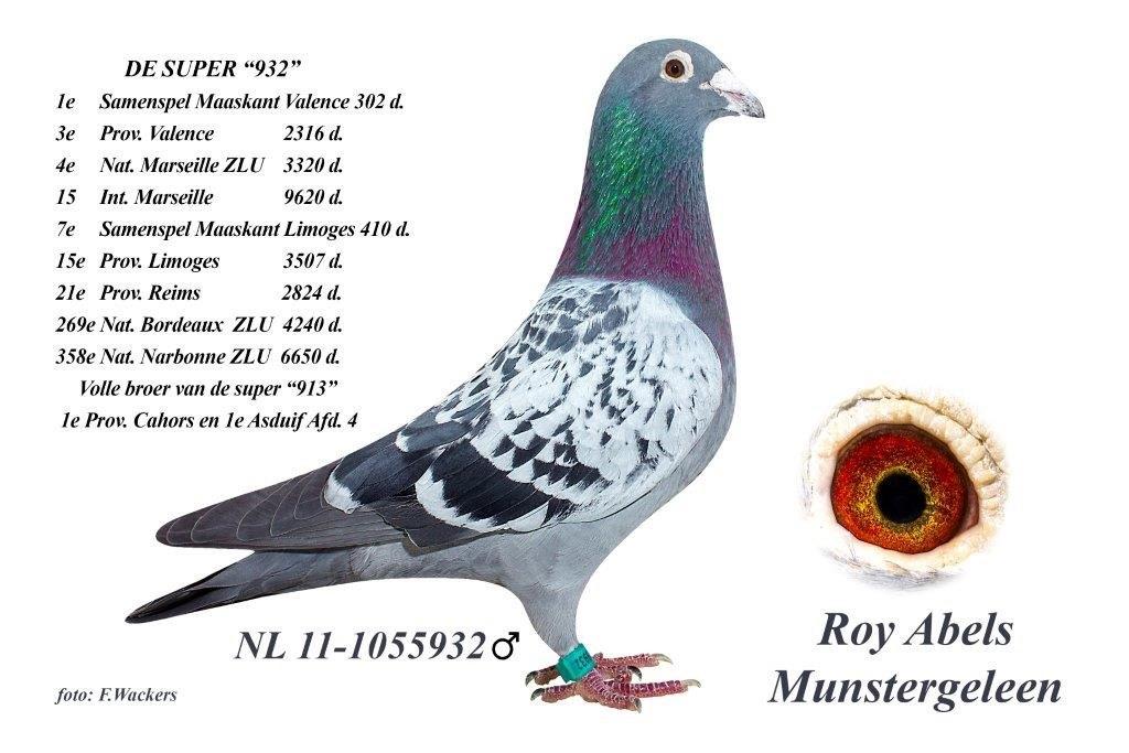 NL11-1055932