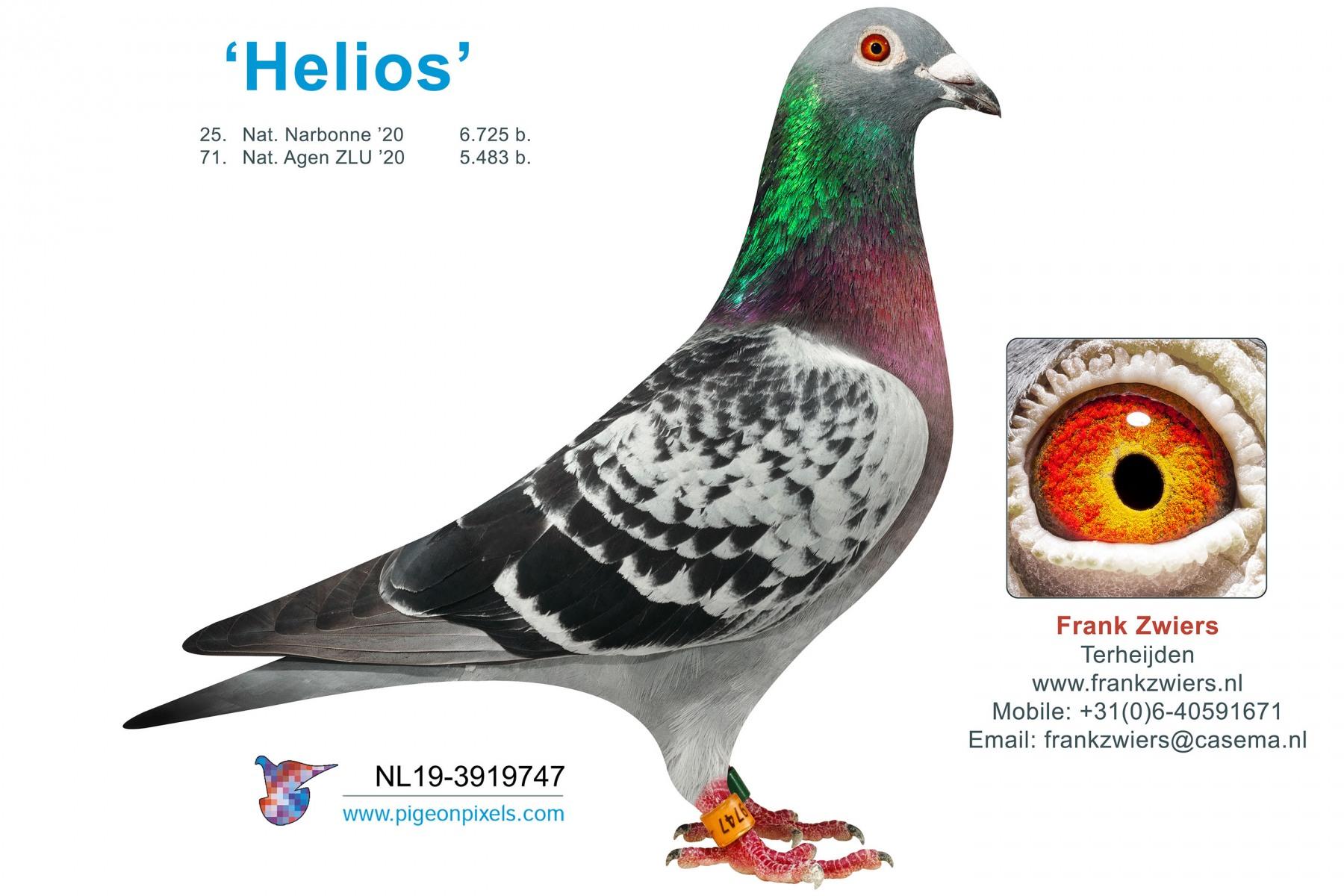 NL19-3919747-LR