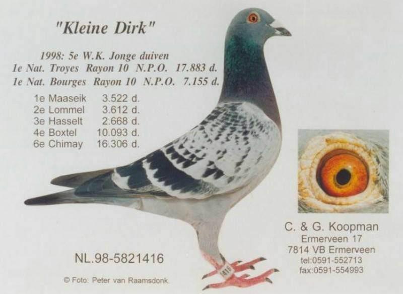 Kleine-Dirk