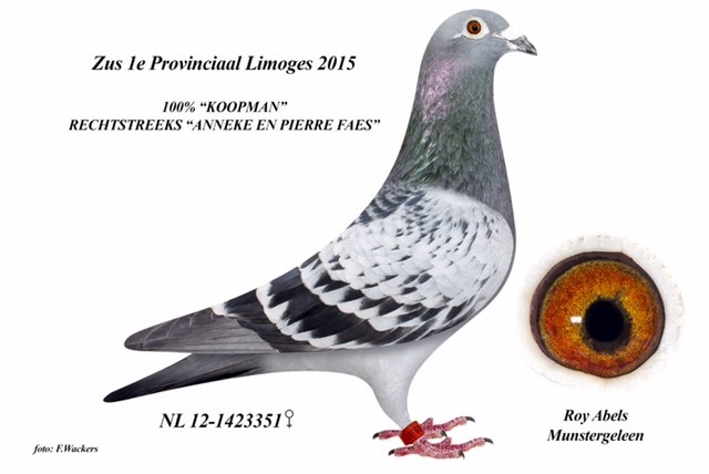NL12-1423351